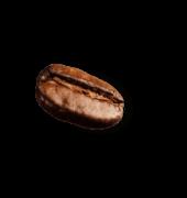 demo-attachment-41-coffee-beans-P4MXYZD7@2x